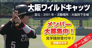 大阪ワイルドキャッツ 大阪の女子野球チーム・メンバー募集